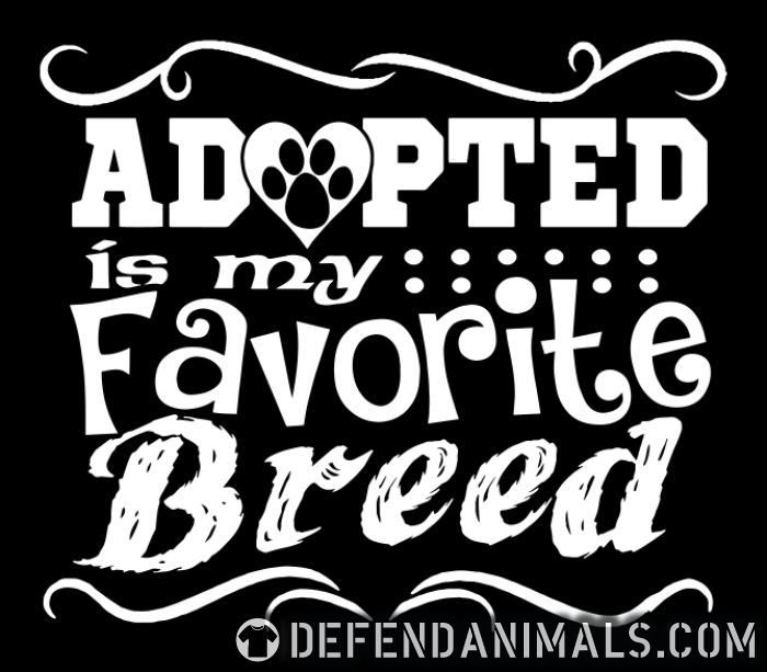 Adopted is my favorite breed - Animal Rights Activism Women Organic T-shirt