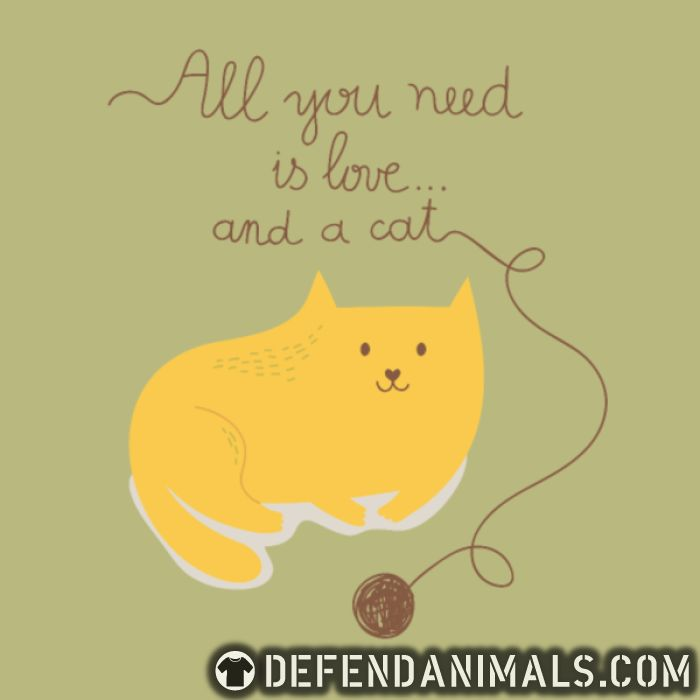 All you need is love ... and a cat  - Cats Lovers T-shirt