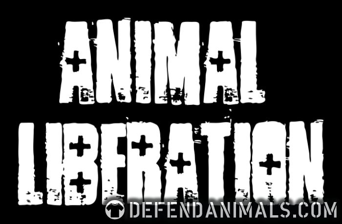Animal liberation - Animal Rights Activism Women Organic T-shirt