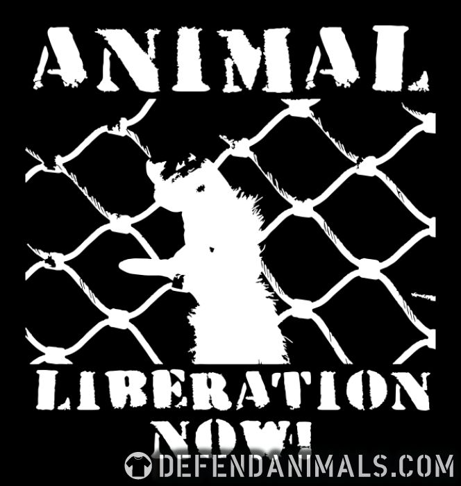 Animal liberation now! - Animal Rights Activism Women T-shirt