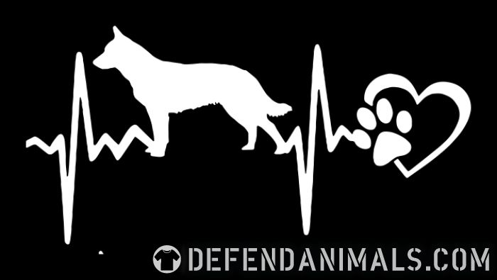 Australian Cattle Dog heartbeat - Dog Breeds Women Organic T-shirt