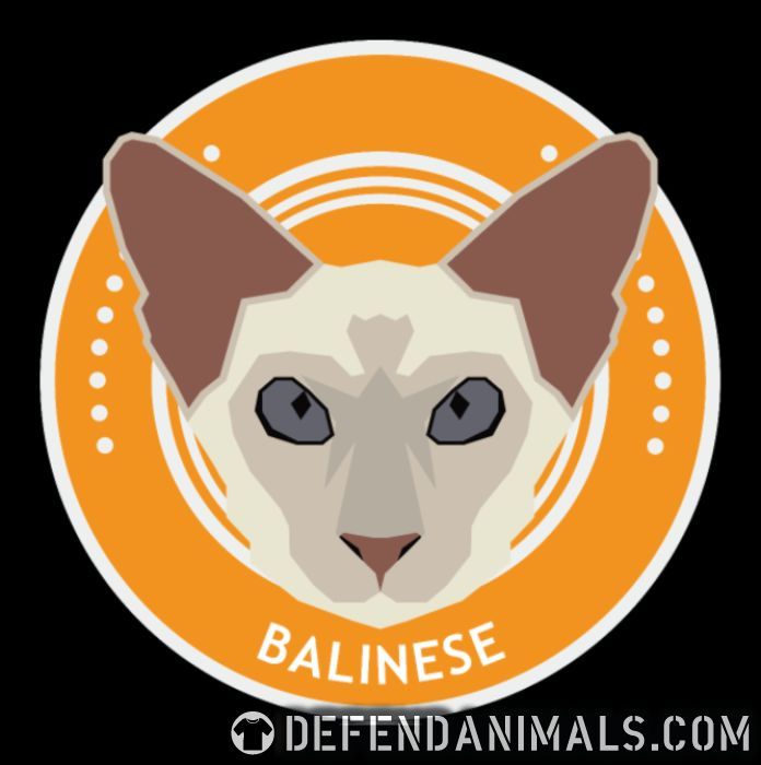 Balinese Cat - Cat Breeds Women Organic T-shirt