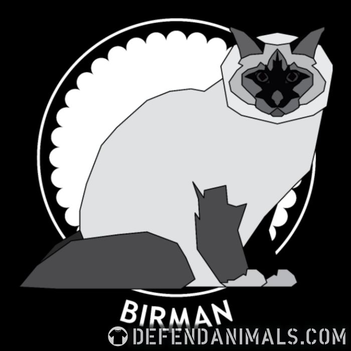 Birman Cat - Cat Breeds Women Organic T-shirt