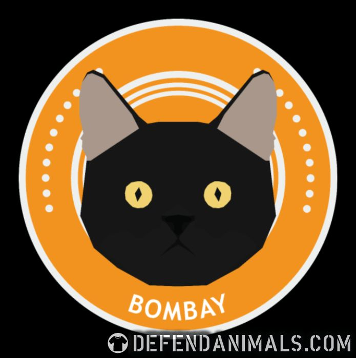 Bombay Cat - Cat Breeds Women Organic T-shirt