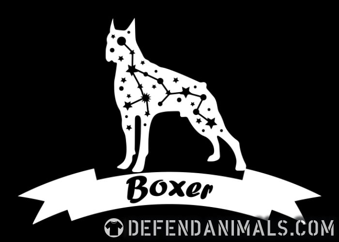 Boxer dog - Dog Breeds Women Organic T-shirt