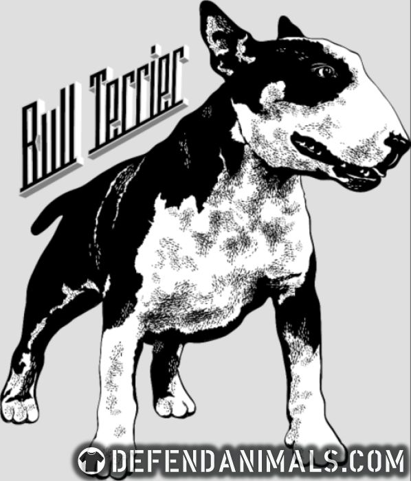 Bull Terrier  - Dog Breeds Women tank tops