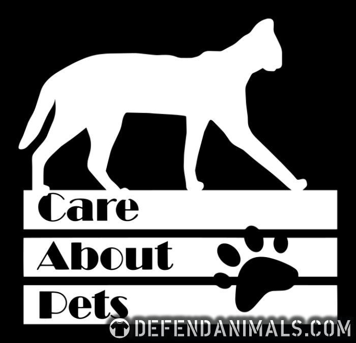 Care about pets - Cats Lovers Women Organic T-shirt