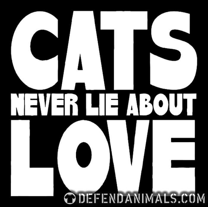 Cats never lie about love  - Cats Lovers Tank top