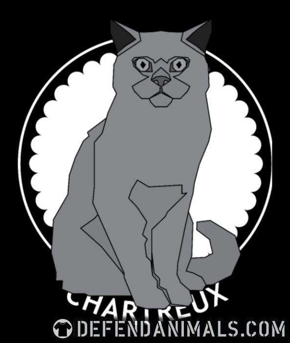 Chartreux Cat - Cat Breeds Women Organic T-shirt