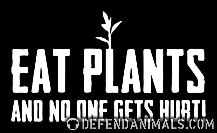 Eat plants and no one gets hurt! - Vegan T-shirt