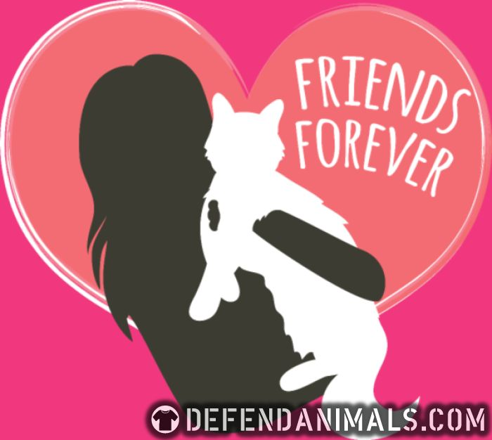 Friends Forever  - Cats Lovers Women Organic T-shirt