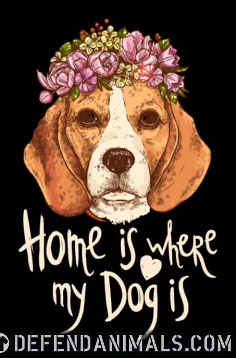 Home is where my dog is  - Dog Breeds Women Organic T-shirt
