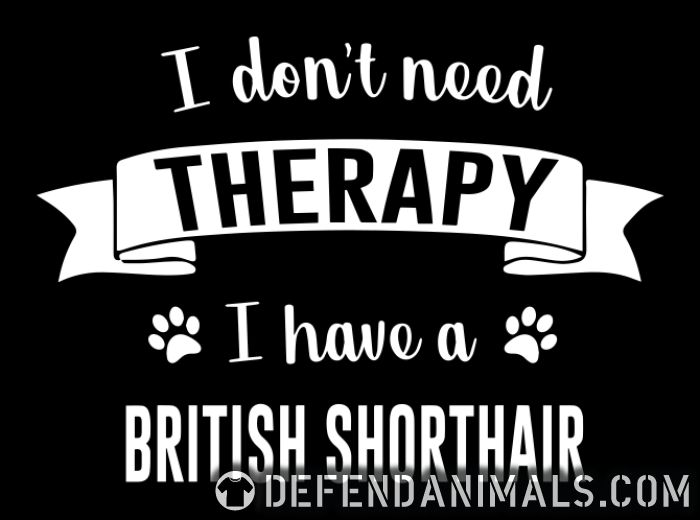 I don't need therapy I have a british shorthair  - Cat Breeds Women Organic T-shirt