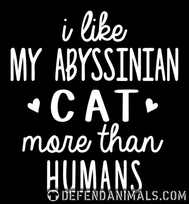 I like my abyssinian cat more than humans - Cat Breeds Women Organic T-shirt