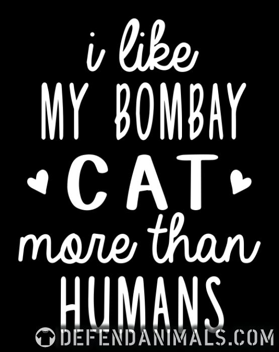 I like my bombay cat more than humans - Cat Breeds Women Organic T-shirt