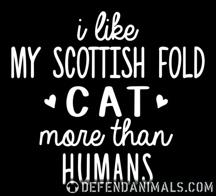 I like my scottish fold cat more than humans - Cat Breeds Zip hoodie