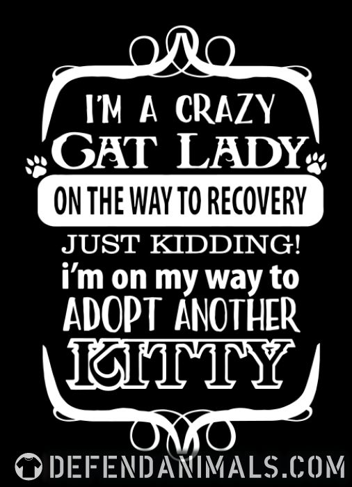 I'm a crazy cat lady on the way to recovery just kidding! i'm on my way to adop another kitty  - Cats Lovers Women Organic T-shirt
