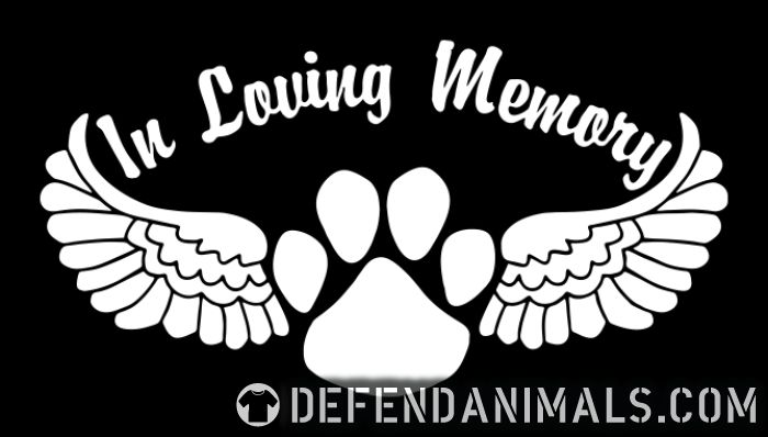 In Loving Memory - Dogs Lovers T-shirt
