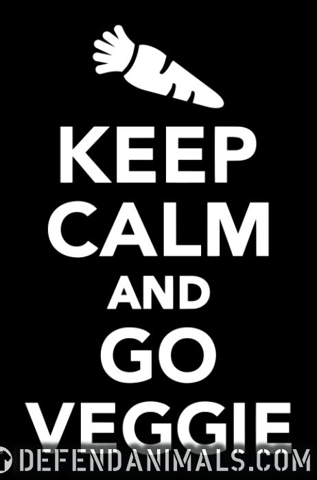 keep calm and go veggie - Vegan Women Organic T-shirt