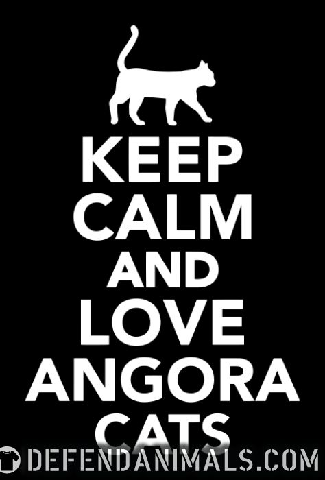 Keep calm and love angora cats - Cat Breeds Women Organic T-shirt