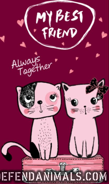 My best friend always together  - Cats Lovers Women Organic T-shirt