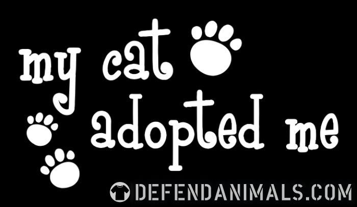 My cat adopted me  - Cats Lovers Women Organic T-shirt