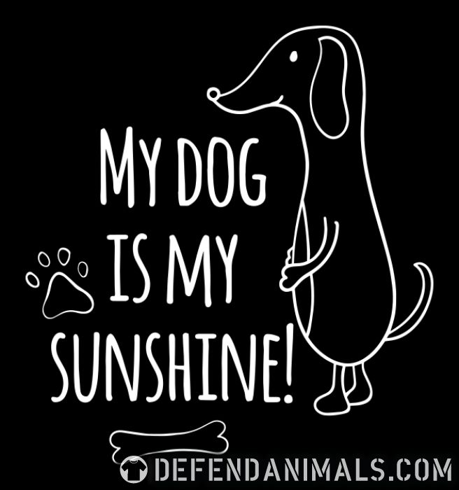 My dog is my sunshine ! - Dogs Lovers Women Organic T-shirt