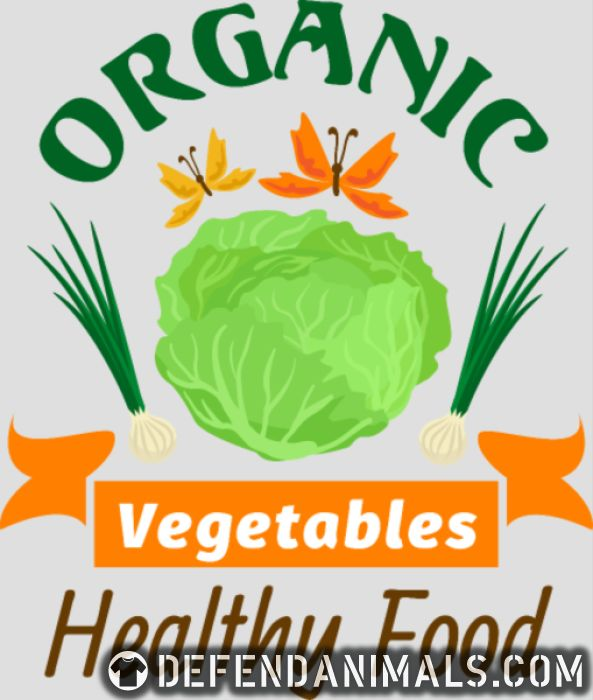 oganic vegetables healty food  - Vegan Women Organic T-shirt