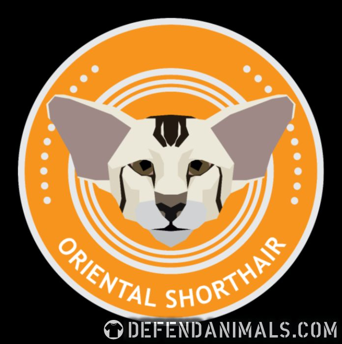 Oriental Shorthair Cat - Cat Breeds Women Organic T-shirt