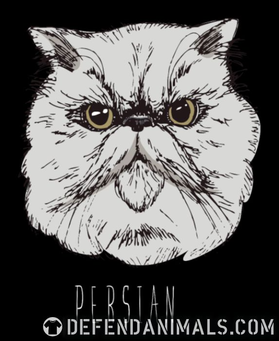 Persian Cat - Cat Breeds Women Organic T-shirt