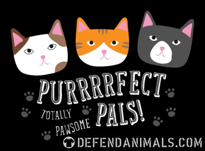 Purrfect pals! totally pawsome  - Cats Lovers Women Organic T-shirt