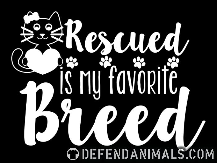 rescued is my favorite breed  - Cats Lovers Women Organic T-shirt