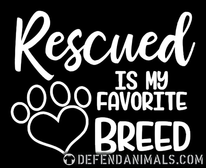 rescued is my favorite breed  - Dogs Lovers Women Organic T-shirt