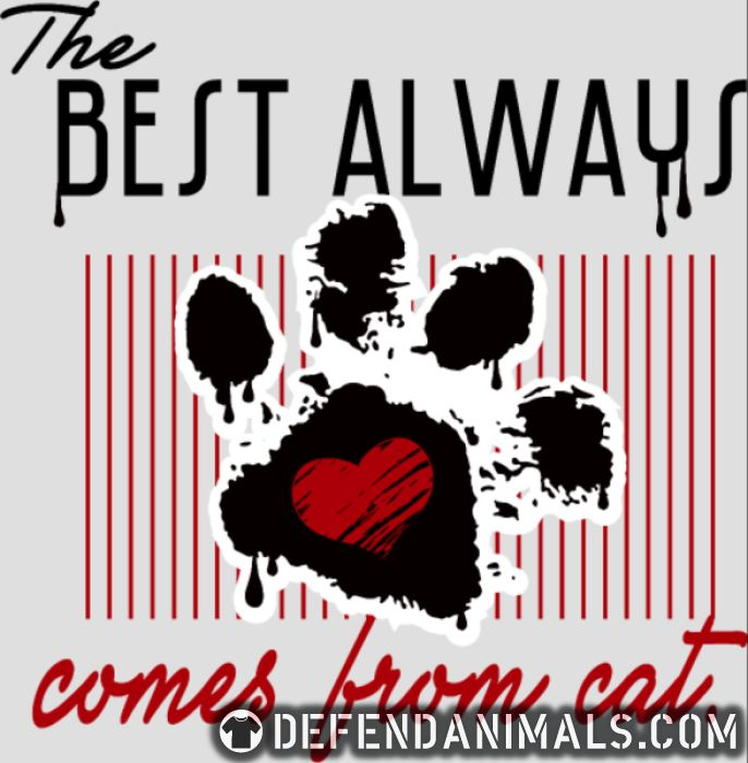 The best always comes from cat - Cats Lovers Women Organic T-shirt