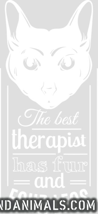 The best therapist has fur and four legs  - Cats Lovers Women Organic T-shirt