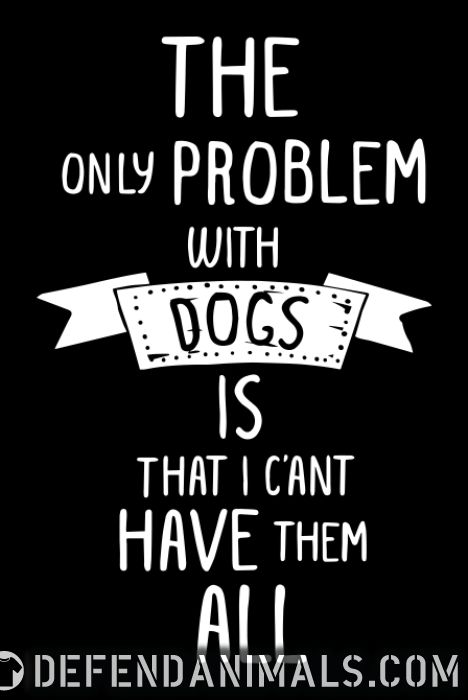 the problem with dogs is that i c'ant have them all - Dogs Lovers T-shirt