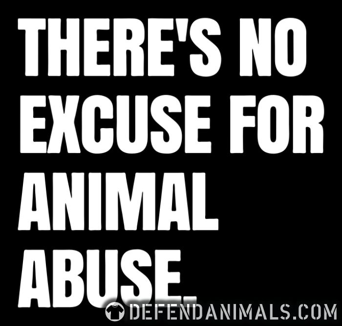Theres no excuse for animal abuse - Animal Rights Activism T-shirt