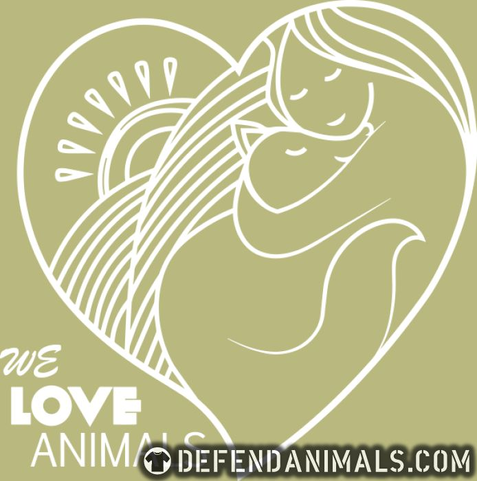 we love animals  - Cats Lovers Women Organic T-shirt