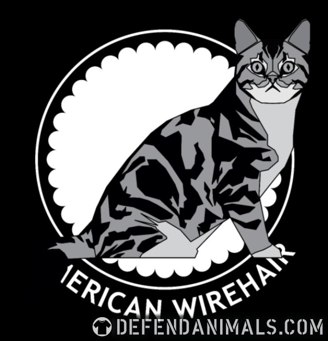 Women-tshirt American Wirehair Cat 🐾 DefendAnimals.com