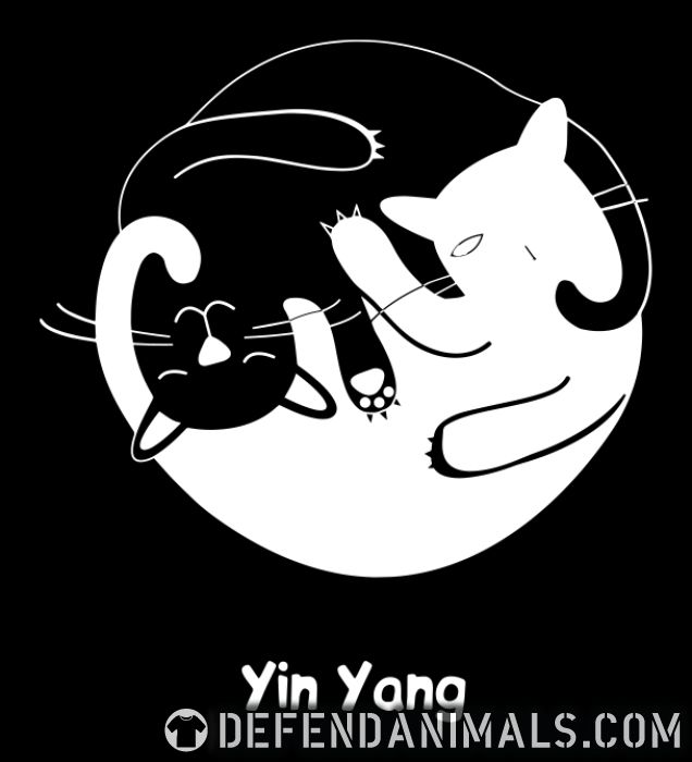 Yin yang  - Cats Lovers Women Organic T-shirt