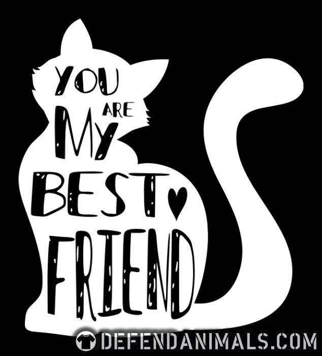 you are my best friend  - Cats Lovers Women Organic T-shirt