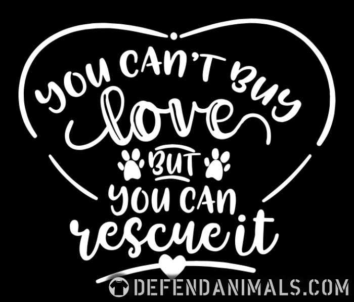 you can,t buy lover but you can rescue it  - Cats Lovers T-shirt