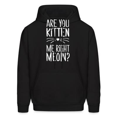 Hoodie are you kitten me right meow