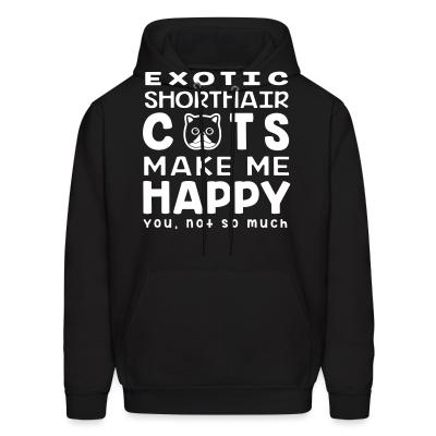 Hoodie Exotic Shorthair cats make me happy. You, not so much.