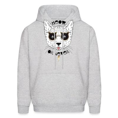 Hoodie Meow or never