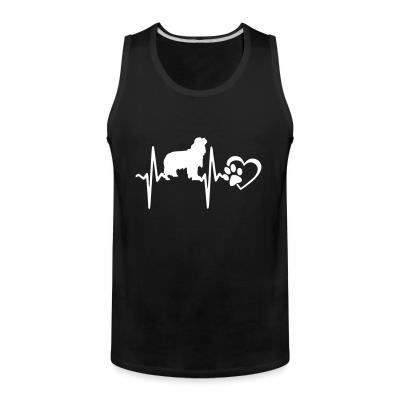 Cavalier King Charles Spaniel Dog heartbeat