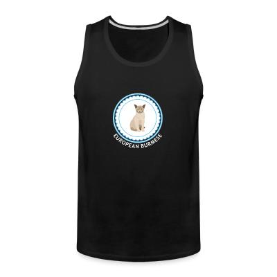 Tank top European burmese cat