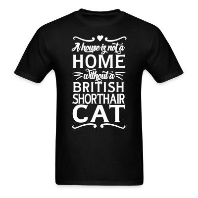 A house is not a home without a british shorthair cat