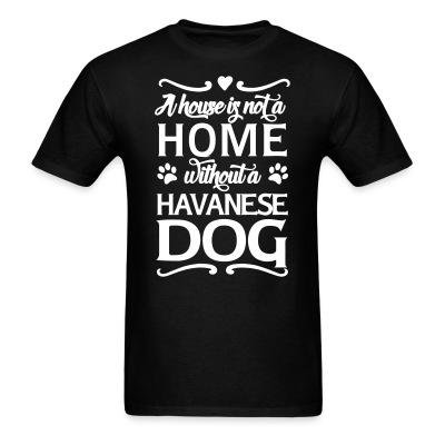 A house is not a home without a havnese dog
