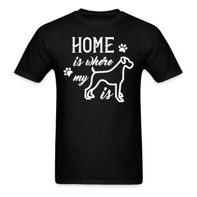 Home is where is my boxer